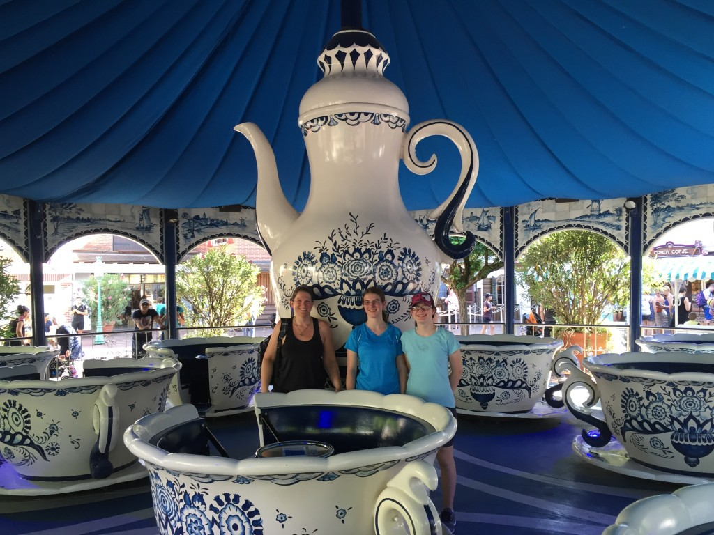 The teacup ride in Holland, with dutch china